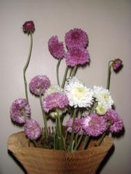 3861-flower_arrangement.jpg