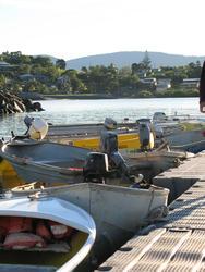 3313-tender boats