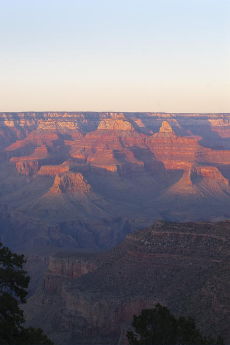 3118-grand canyon golden hour