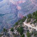 3176-grand canyon walking track