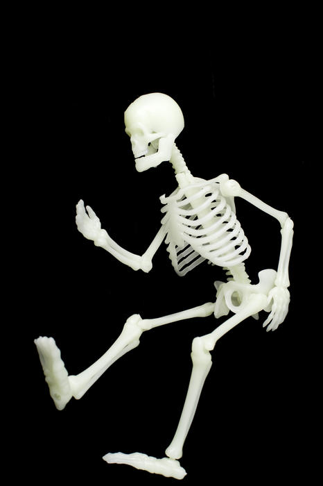 a toy human skeleton