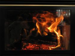 3366-burning logs