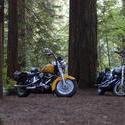 3105-classic motocycles