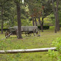 4168-Old Wagon In Field