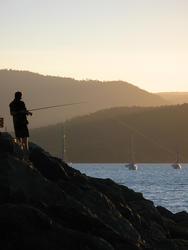 3373-fishing silhouette