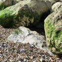 3892-rocks_on_the_beach.JPG
