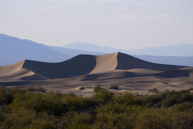 3078-Sand Dunes