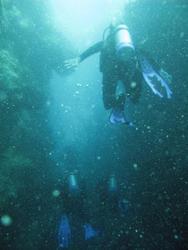 3354-scuba divers