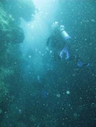 3355-divers underwater