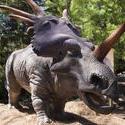3237-styracosaurus