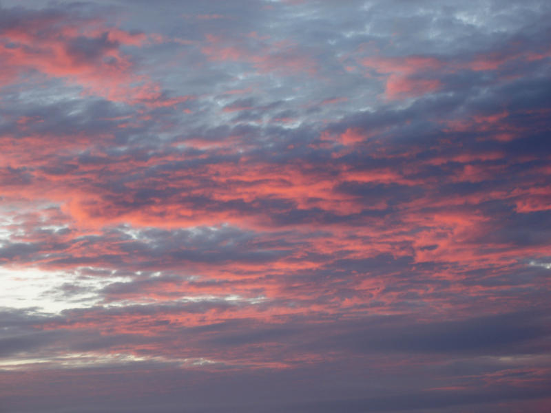 clouds glowing pink illuminated by the setting sun