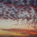 4366   sunset portrait