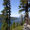 3035-tahoe forest