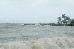 3541-tropical storm