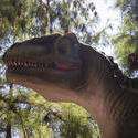 3240-tyrannosaurus rex