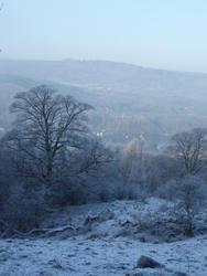 3516-lakeland winter scene