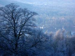 3530-windermere winter
