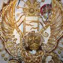 4810   flamboyant costume