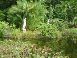 4818   bahamas garden