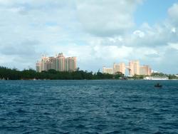 4819   bahamas hotels