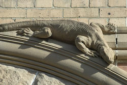 4576   stone lizard
