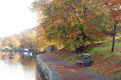 5154   Tranquil Autumn River Scene