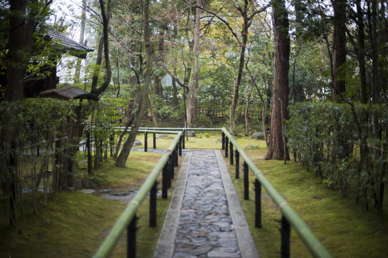 bamboo pole lined stone path at koto-in temple, kyoto, Japan