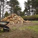 5793   wood pile
