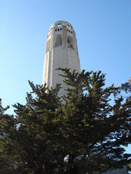 5744   coit tower