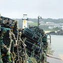 7287   Lobster pots in St Ives harbour