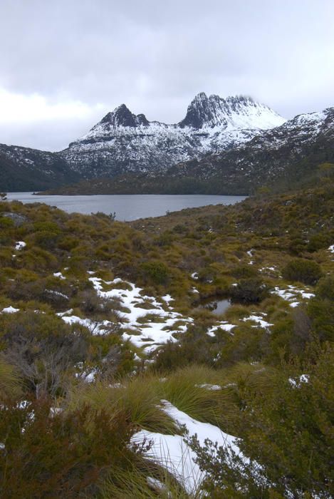 winter in tasmanias high country, Cradle Mountain-Lake St Clair National Park