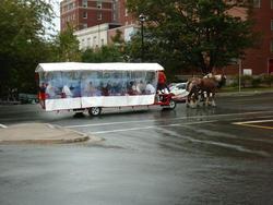 6720   Horse drawn tourism in Halifax