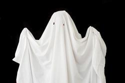 6489   bed sheet phantom