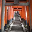 6005   torii gates