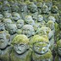 6096   Otagi Nenbutsu ji Kawaii