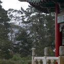 5590   golden gate pagoda