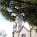 5776   san francisco christmas