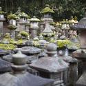 6112   Kasuga Taisha Lanterns