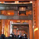 6119   red torii gates