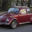 7231   volkswagen beetle