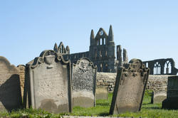7919   Gravestones at Whitby abbey