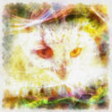 8986   abstract owl