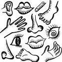 10896   anatomy doodle icons