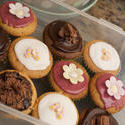 10397   Plastic container filled with colorful cupcakes