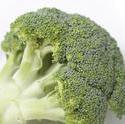 8481   Head of fresh broccoli