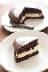 10582   Slice of delicious chocolate cake