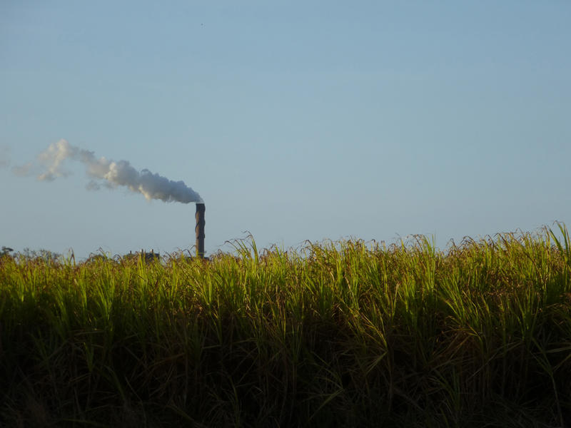 10786   Green Fields with Smoking Industrial Chimney Afar