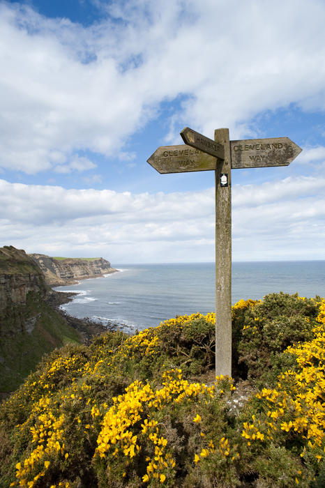 7974   Cleveland Way signpost