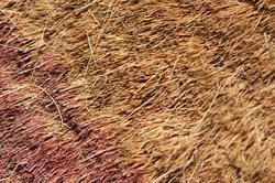 10912   Background texture of a rough coir mat
