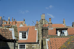 7928   Cottage roofscape